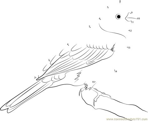 yellow hammer coloring page connect the dots yellowhammer state bird of alabama birds