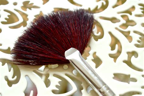 what is a fan makeup brush used for what are fan brushes used for raspberrykiss