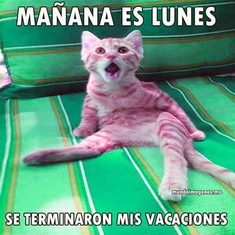 imagenes terminan vacaciones memes se terminaron las vacaciones mundo imagenes frases