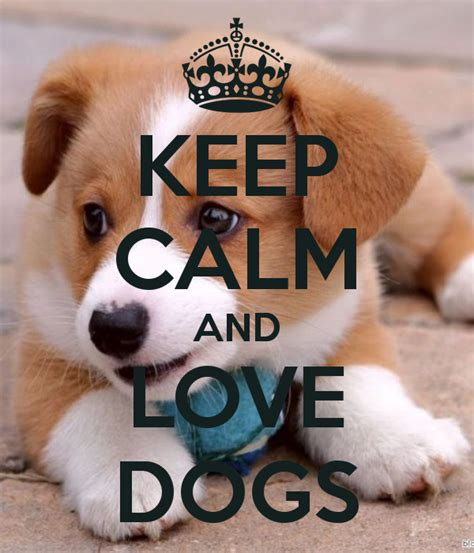calm dogs keep calm and dogs poster kaka keep calm o matic