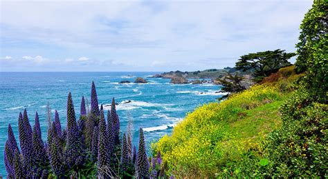 hill house inn hotel in mendocino ca lowest price