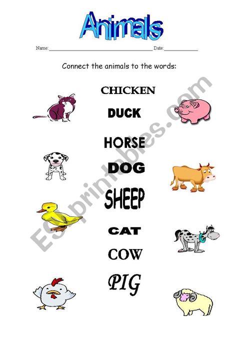 connect exercise animals esl worksheet  sivartan