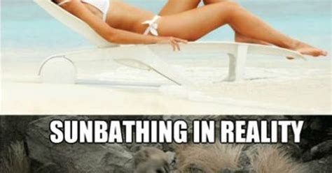 Irish Girl Sunbathing Meme - truth about sunbathing truths