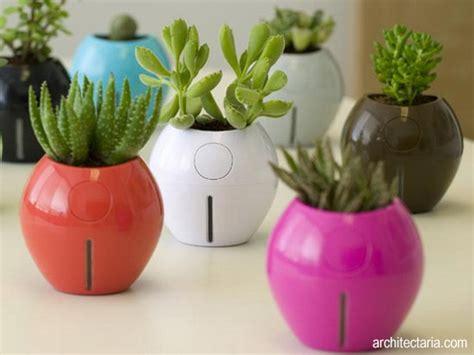 design bunga unik berkreasi dengan pot bunga edisi i pt architectaria