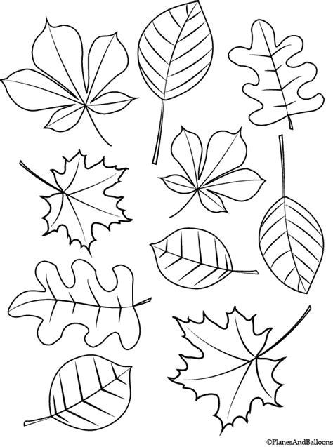 fall coloring pages for fall coloring pages for children free instant