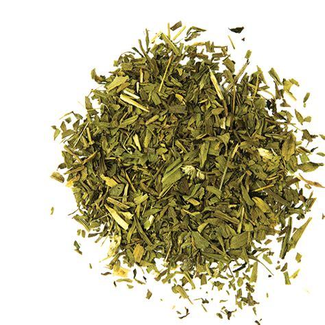 dragoncello in cucina dragoncello estragon erba aromatica in cucina toomaki