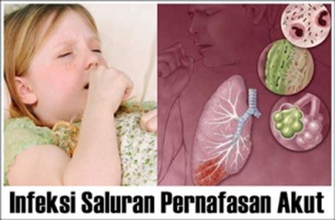 Madu Anak Obat Herbal Ispa Infeksi Saluran Pernafasan Flek Paru Paru obat ispa herbal alami untuk anak dan dewasa jelly gamat qnc