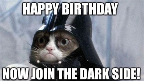 Grumpy Cat Happy Birthday Meme - funny cat happy birthday memes trolls cat birthday memes