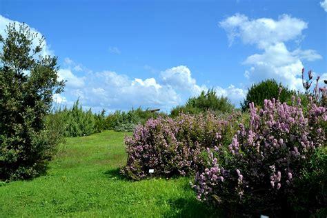 giardino botanico biotopo e giardino botanico