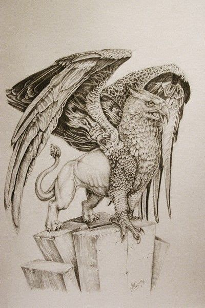gryphon tattoo designs 35 mind blowing griffin designs