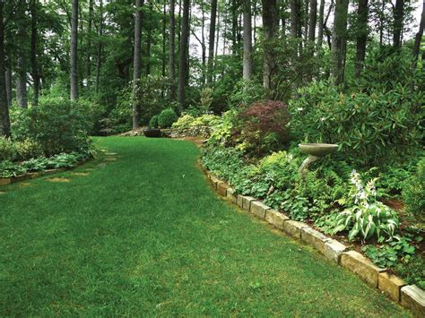 wooded backyard ideas landscape design wooded backyard izvipi com