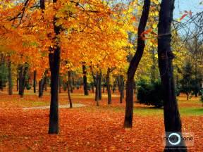 imagenes de otoño en mendoza mis labores de px y llego el oto 209 o