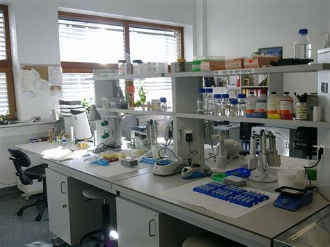 lab bench molecular biology file laboratorium biologia molekularna jpg wikimedia commons