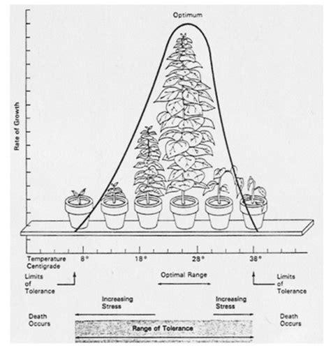 Menyinari Relung Relung Ruhani 1 bioteknologi relung ekologi