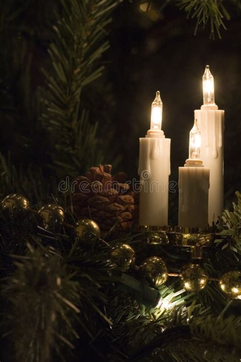candle christmas tree lights stock photo image  tree