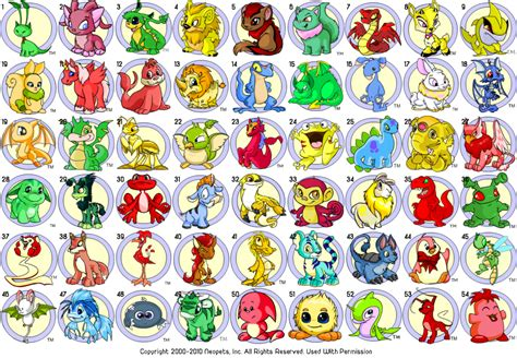 neopet colors the neopets swag
