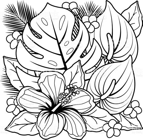 free coloring pictures of tropical flowers tropical plants and hibiscus flowers coloring book page