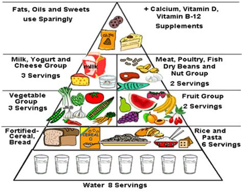 is balance a food components of a healthy balanced diet deepgala