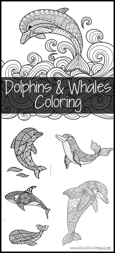 coloring pages of dolphins and whales montessori europe coloring pictures coloring pages