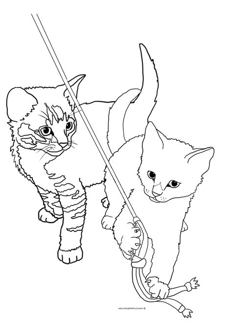 cats playing coloring pages cat coloring pages