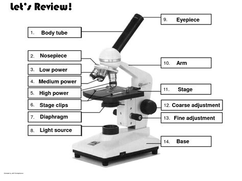 compound light microscope parts and functions 5 best images of parts of a compound microscope diagram