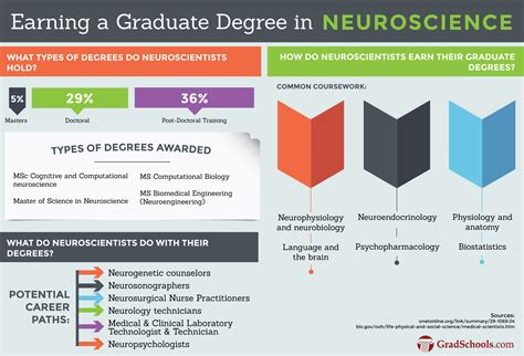 studying for a degree phd in neuroscience programs doctorate in neuroscience