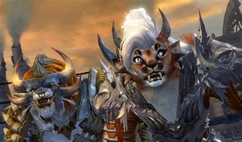 new face options all races male female guild wars 2 guild wars 2 new hairstyles dulfy 2015