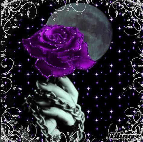 Imagenes Goticas Brillantes | rosa morada fotograf 237 a 80590346 blingee com