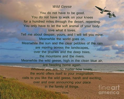Wood Wall Decor Sayings 40 Wild Geese Mary Oliver Photograph By Joseph Keane