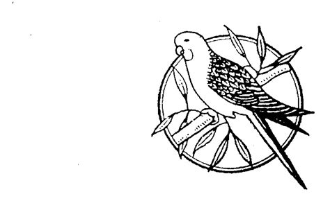 Outline Pty Ltd by Bird Parrot Perched On Branch In Circle By Rosella Brands Pty Ltd 306056