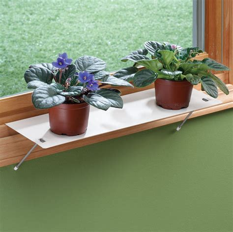 window ledge plant shelf window plant shelf and how to hang it best design for room