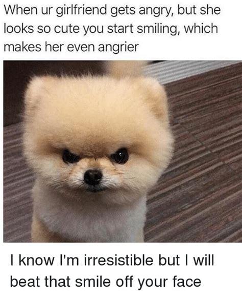 So Cute Meme Face - so cute meme face 28 images so cute cute face meme by