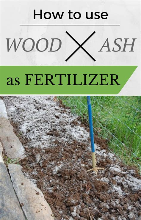 Learn How To Use Wood Ash As Fertilizer Gardens How Much Fertilizer To Use In Vegetable Garden