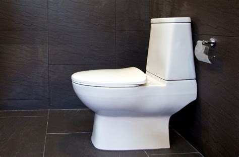 Toilet Bowl Plumbing How To Install A Toilet Caldwell Plumbing Serving The