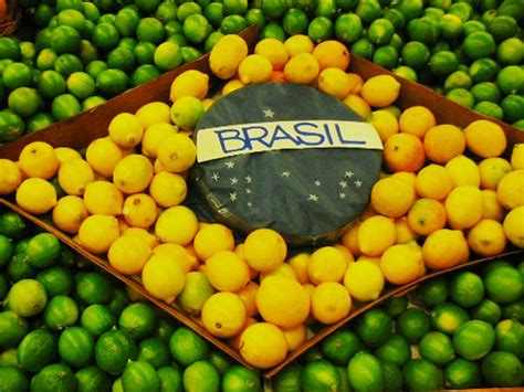 consolato brasile brasile traduzione asseverazione legalizzazione il