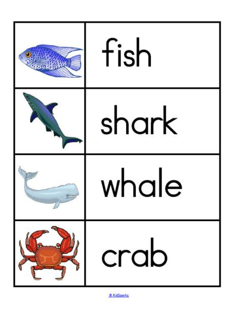 free printable sea animals flashcards sea animals wall cards oceans animals theme activities and printables for
