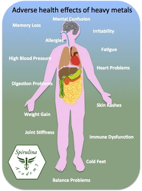 Effects On Detox by Spirulina And Heavy Metal Detox Spirulina Academy