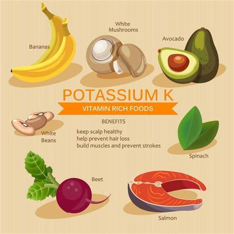 vegetables rich in potassium fruits high in potassium