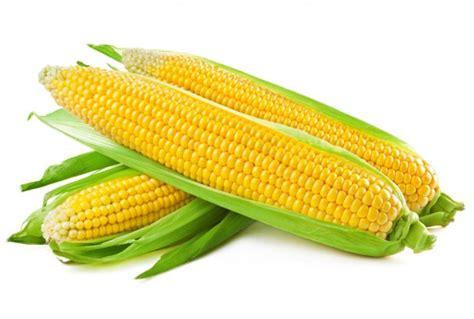Best Seller Corn Pengupas Jagung ag market corn extends dip on us crop