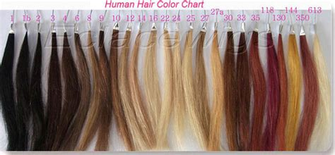 8 Best Hair Colour Chart Images On Colour Chart Hair Color Charts And Hair Color Color 350 Human Hair Wigs Custom Human Hair Wigs