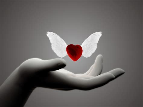 images of love hands wings hands of love wallpapers 1600x1200 179771