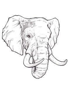 1000 ideas about elephant head on pinterest small
