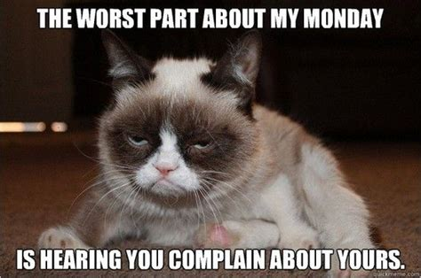 Grumpy Cat Monday Meme - grumpy cat monday quotes monday humor monday morning