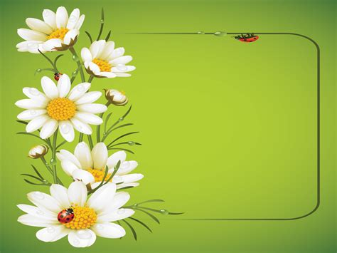Ladybug And Daisies Ppt Template Backgrounds Flowers Green White Templates Free Ppt Flowers Powerpoint Template