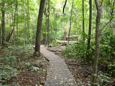 ecoindiana wesselman woods nature preserve