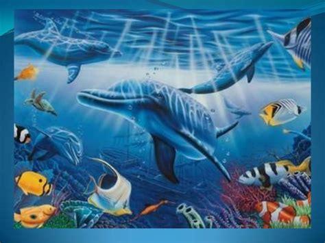 imagenes de jardines acuaticos animales acuaticos diapositivas