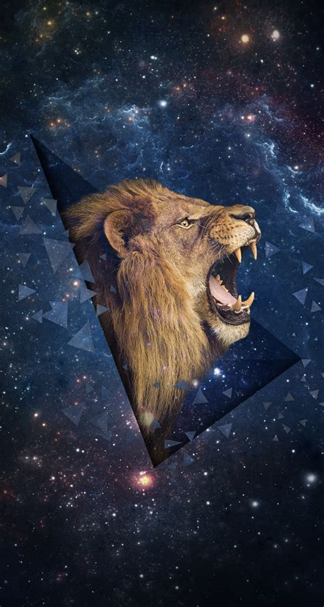 wallpaper for iphone 6 lion lion iphone wallpaper download hd 2140 hd wallpaper site