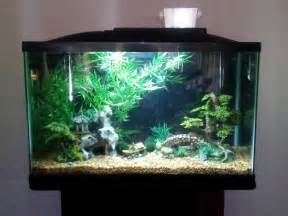 asia dekoration asian fish tank decorations