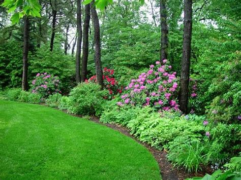 backyard borders lovely backyard perennial border garden dreams pinterest