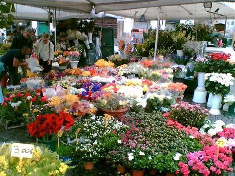 mercato fiori blitz al mercato 171 nero 187 dei fiori 12 500 piante